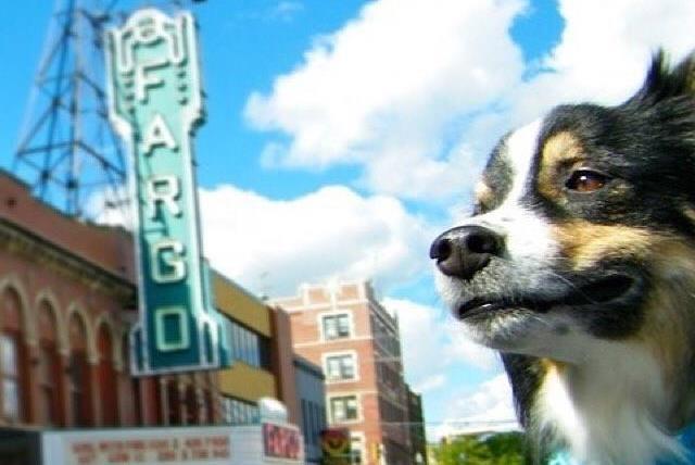 Dog friendly Fargo Theatre marquee - pet friendly hotels in fargo nd