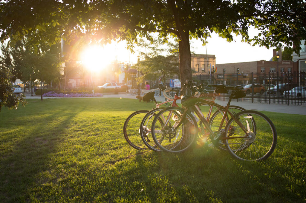 Bikes in Downtown Fargo against a tree at sunset